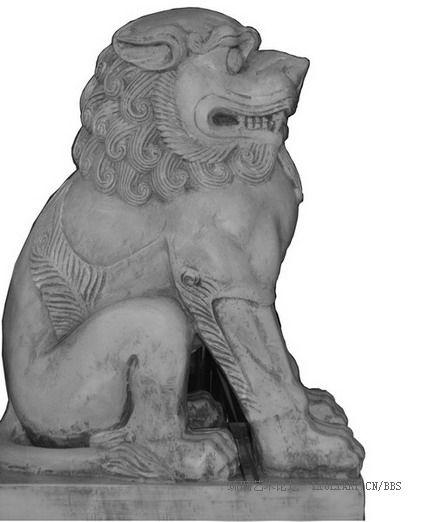 雄狮的头大得夸张,且吼声如雷,唯狮子称吼,而虎则啸,可见狮子的凶猛.